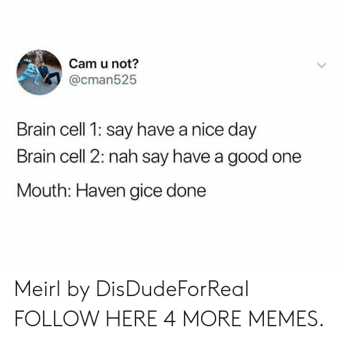 Brained: Cam u not?  @cman525  Brain cell 1: say have a nice day  Brain cell 2: nah say have a good one  Mouth: Haven gice done Meirl by DisDudeForReal FOLLOW HERE 4 MORE MEMES.