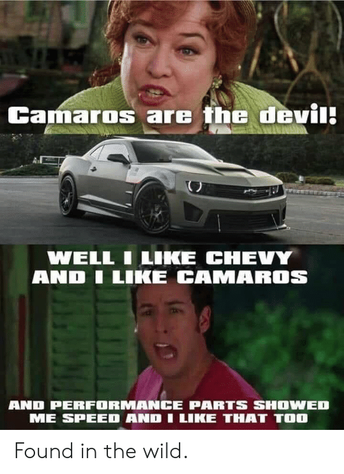 Chevy, Wild, and Terrible Facebook: Camaros are the devi  WELL ILIKE CHEVY  AND LIKE CAMAROS  AND PERFORMANCE PARTS SHOWED  ME SPEED AND I LIKE THAT TOO Found in the wild.