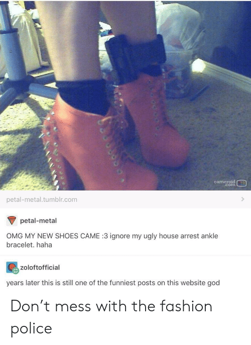 petal: cameroid  .com  petal-metal.tumblr.com  petal-metal  OMG MY NEW SHOES CAME :3 ignore my ugly house arrest ankle  bracelet. haha  zoloftofficial  years later this is still one of the funniest posts on this website god Don't mess with the fashion police