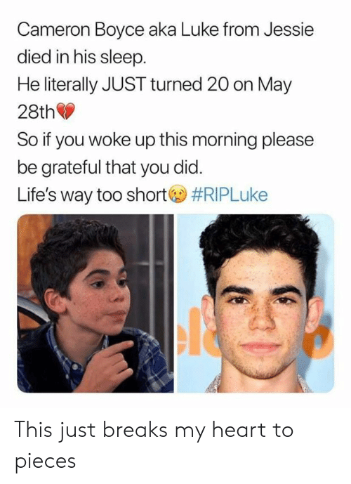 Funny, Heart, and Sleep: Cameron Boyce aka Luke from Jessie  died in his sleep  He literally JUST turned 20 on May  28th  So if you woke up this morning please  be grateful that you did.  Life's way too short  This just breaks my heart to pieces