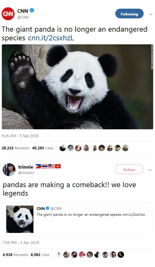 giant panda: CAN  Following  @CNN  The giant panda is no longer an endangered  species cnn.it/2csxhzL  4:26 AM - 5 Sep 2016  28,215 Retweets 40,263 Likes-  a β   trinnie  @mixielot  Follow  pandas are making a comeback!! we love  CNN Φ @CNN  The giant panda is no longer an endangered species cnn.it/2csxhzL  7:56 PM-1 Apr 2018  4,928 Retweets 8,062 LikesQ