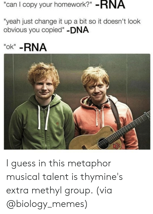 "Metaphor: can I copy your homework?"" -RNA  ""yeah just change it up a bit so it doesn't look  obvious you copied""-DNA  ""ok"" -RNA I guess in this metaphor musical talent is thymine's extra methyl group. (via @biology_memes)"