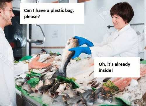 Can I Have: Can I have a plastic bag,  please?  Oh, it's already  inside!