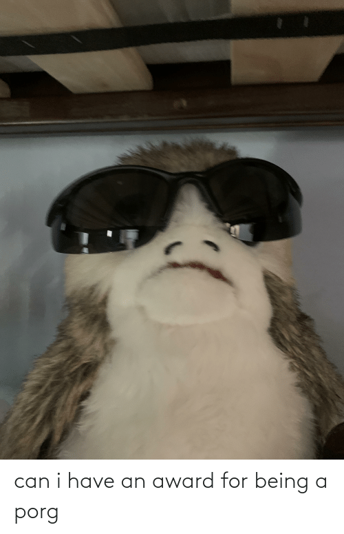 Can I Have: can i have an award for being a porg