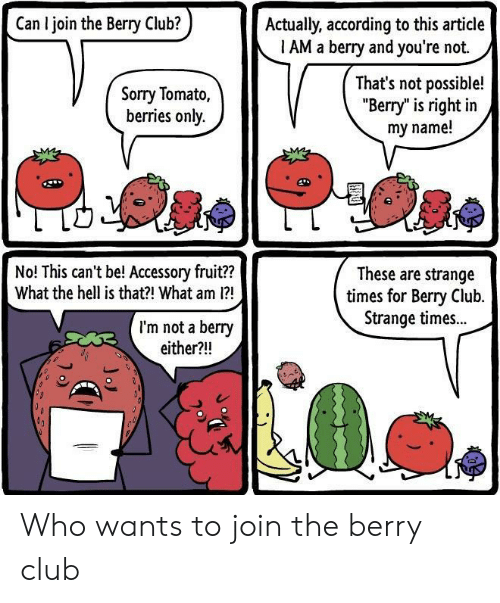 "Club, Sorry, and Hell: Can I join the Berry Club?  Actually, according to this article  1 AM a berry and you're not.  Sorry Tomato,  berries only.  That's not possible!  ""Berry"" is right in  my name!  No! This can't be! Accessory fruit??  What the hell is that?! What am 1?  These are strange  times for Bery Club.  Strange times..  I'm not a berry  either?!! Who wants to join the berry club"