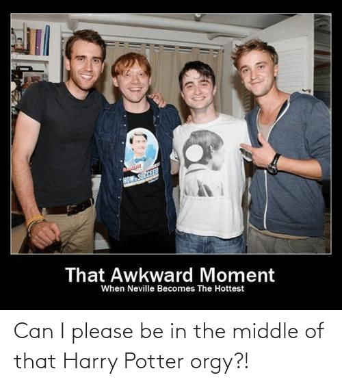 Harry Potter: Can I please be in the middle of that Harry Potter orgy?!