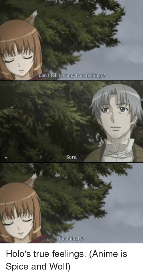 Animals, Anime, and Dank: Can I tell you my  true teelings?  Sure.  tingly Holo's true feelings.  (Anime is Spice and Wolf)