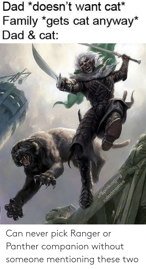 panther: Can never pick Ranger or Panther companion without someone mentioning these two
