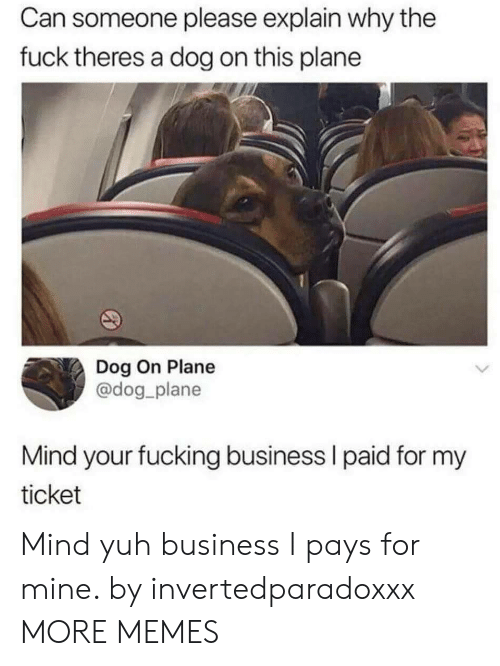 Dog On: Can someone please explain why the  fuck theres a dog on this plane  Dog On Plane  @dog plane  Mind your fucking business l paid for my  ticket Mind yuh business I pays for mine. by invertedparadoxxx MORE MEMES