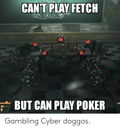 poker: CAN T PLAY FETCH  BUT CAN PLAY POKER  NW Gambling Cyber doggos.