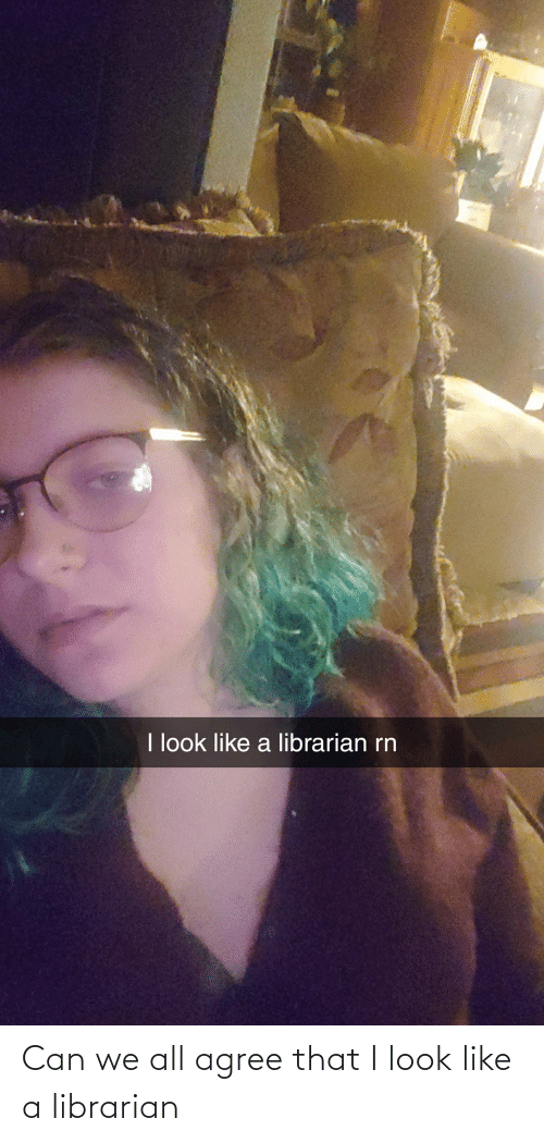 librarian: Can we all agree that I look like a librarian