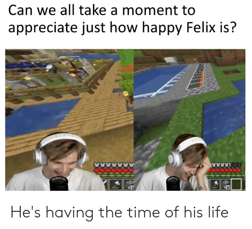 Life, Appreciate, and Happy: Can we all take a moment to  appreciate just how happy Felix is?  45  4j He's having the time of his life