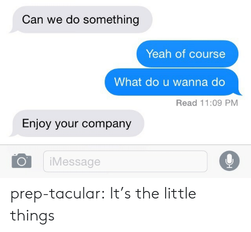 Wanna Do: Can we do something  Yeah of course  What do u wanna do  Read 11:09 PM  Enjoy your company  iMessage prep-tacular:  It's the little things