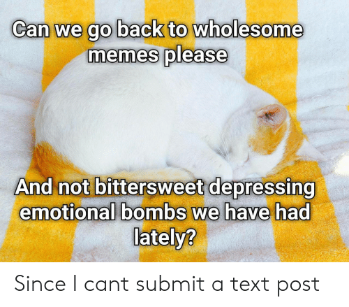 Memes, Text, and Wholesome: Can we go back to wholesome  memes please  And not bittersweet depressing  emotional bombs we have had  lately? Since I cant submit a text post