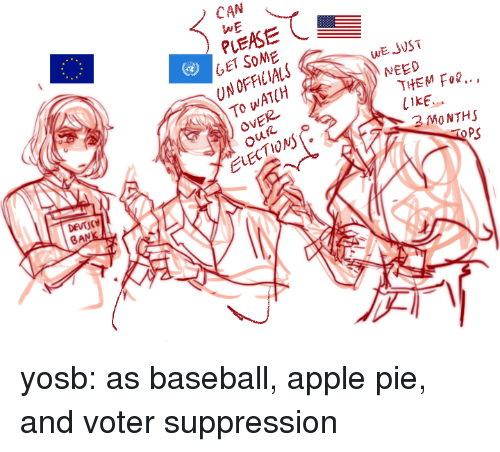 Apple Pie: CAN  WE  PLEASE  GET SOME  UN OFFICIALS  To WATCH  OVER  WE JVST  NEED  THEM Fo..,  LIKE  2 MO NTHS  2  ELECTIONs  PS  BAN yosb:  as baseball, apple pie, and voter suppression