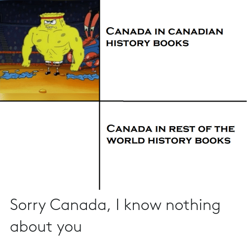 Books, Sorry, and Canada: CANADA IN CANADIAN  HISTORY BOOKS  దివదల  CANADA IN REST OF THE  WORLD HISTORY BOOKS Sorry Canada, I know nothing about you