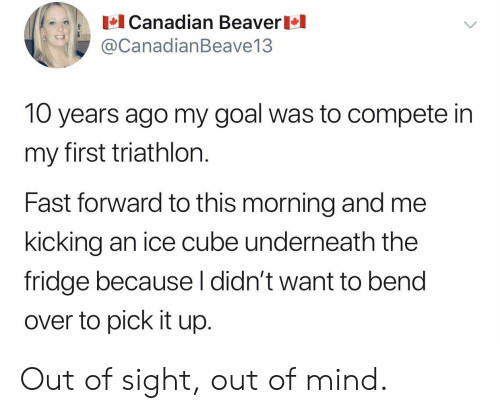 Ice Cube: Canadian Beaver  @CanadianBeave13  10 years ago my goal was to compete in  my first triathlon.  Fast forward to this morning and me  kicking an ice cube underneath the  fridge because l didn't want to bend  over to pick it up. Out of sight, out of mind.