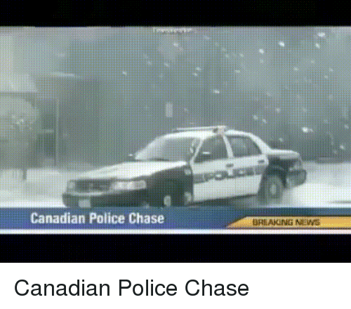 Favorite Gif: Canadian Police Chase  BREAKING NIN Canadian Police Chase