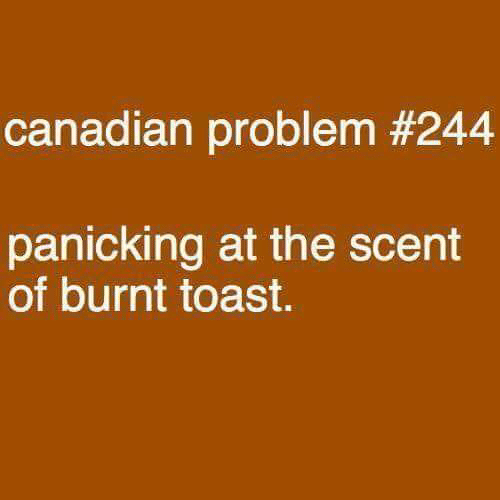 Burnt Toast: canadian problem #244  panicking at the scent  of burnt toast.