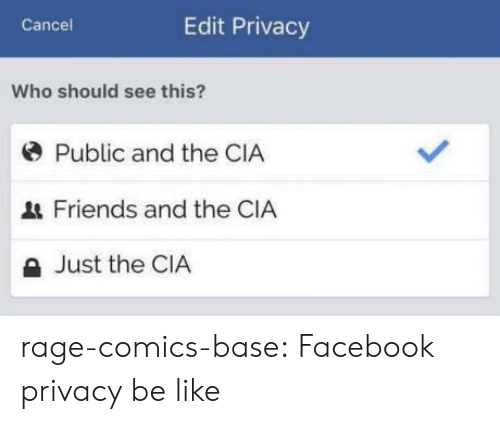 Be Like, Facebook, and Friends: Cancel  Edit Privacy  Who should see this?  * Public and the CIA  Friends and the CIA  a Just the CIA rage-comics-base:  Facebook privacy be like