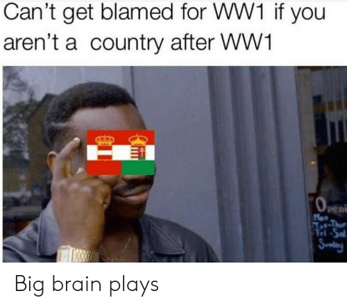 Brain, Ww1, and Big: Can't get blamed for WW1 if you  aren't a country after WW1  OeEn  Men  Aet-Thue  Tri-Sal  Snday Big brain plays