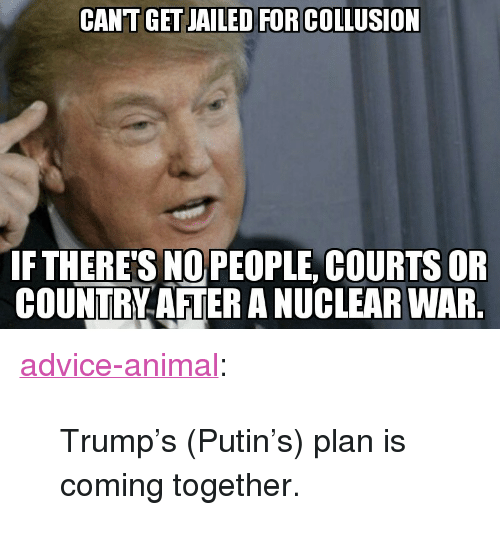 "nuclear war: CANT GET JAILED FOR COLLUSION  FTHERE'S NOPEOPLE, COURTS OR  COUNTRY AFTER A NUCLEAR WAR <p><a href=""http://advice-animal.tumblr.com/post/169280716843/trumps-putins-plan-is-coming-together"" class=""tumblr_blog"">advice-animal</a>:</p>  <blockquote><p>Trump's (Putin's) plan is coming together.</p></blockquote>"