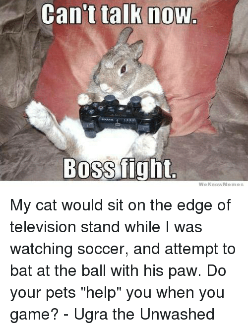 """We Know Meme: Can't talk now  Bossfight.  We Know Memes My cat would sit on the edge of television stand while I was watching soccer, and attempt to bat at the ball with his paw. Do your pets """"help"""" you when you game?  - Ugra the Unwashed"""
