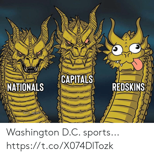 D C: CAPITALS  REDSKINS  NATIONALS  @NFL MEMES Washington D.C. sports... https://t.co/X074DlTozk