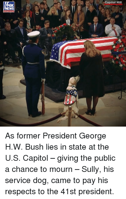 Mourn: Capitol Hill  OX  EWS  channel As former President George H.W. Bush lies in state at the U.S. Capitol – giving the public a chance to mourn – Sully, his service dog, came to pay his respects to the 41st president.