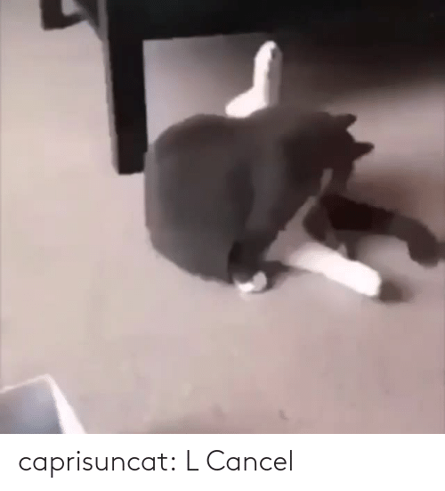 Cancel: caprisuncat: L Cancel