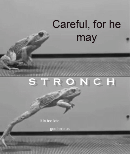 Careful: Careful, for he  may  STRONCH  it is too late  god help us