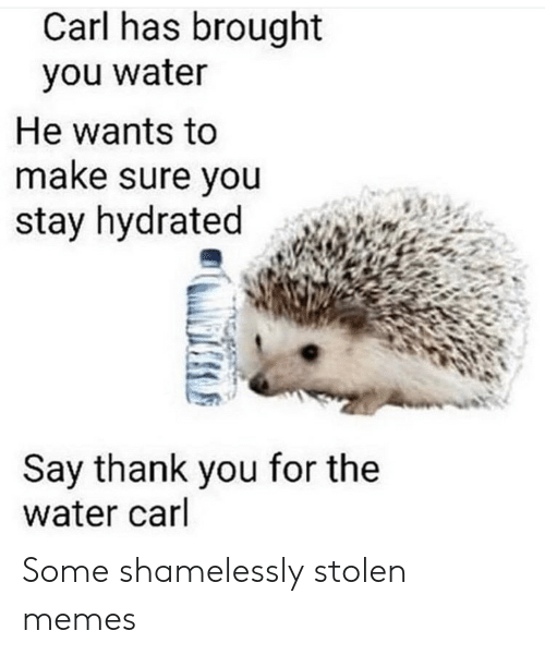 Memes, Thank You, and Water: Carl has brought  you water  He wants to  make sure you  stay hydrated  Say thank you for the  water carl Some shamelessly stolen memes