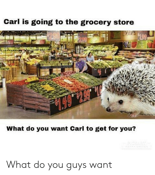 You, What, and Store: Carl is going to the grocery store  199  .6514  What do you want Carl to get for you? What do you guys want
