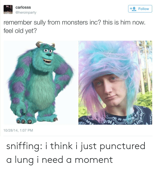 Lunges: carlosss  @heroinparty  Follow  remember sully from monsters inc? this is him now  feel old yet?  10/28/14, 1:07 PM sniffing:  i think i just punctured a lung i need a moment