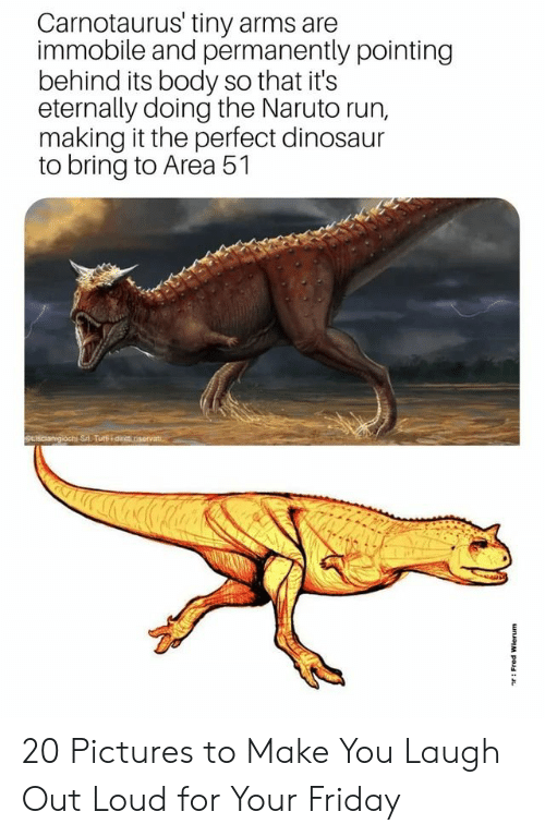 laugh out loud: Carnotaurus' tiny arms are  immobile and permanently pointing  behind its body so that it's  eternally doing the Naruto run,  making it the perfect dinosaur  to bring to Area 51  SLIscianigiochi Sri Tuti dinit riservat  unJoM pou: 20 Pictures to Make You Laugh Out Loud for Your Friday