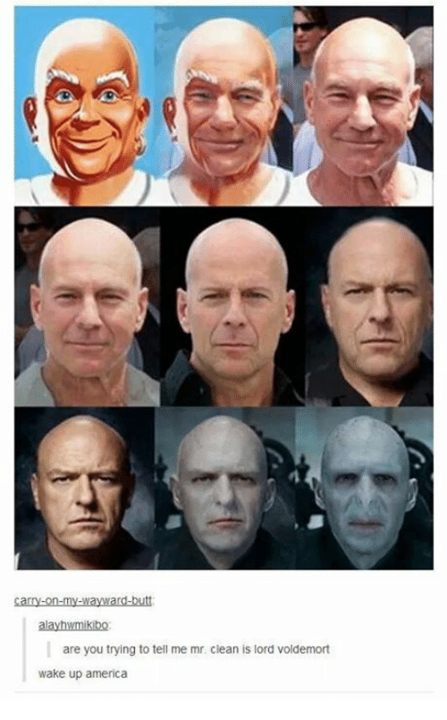 wake up america: carry-on-my-wayward-butt  alayhwmikibo  are you trying to tell me mr. clean is lord voldemort  wake up america