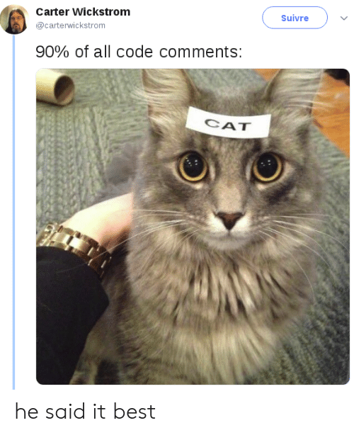 Best, Cat, and Code: Carter Wickstrom  Suivre  @carterwickstrom  90% of all code comments:  CAT he said it best