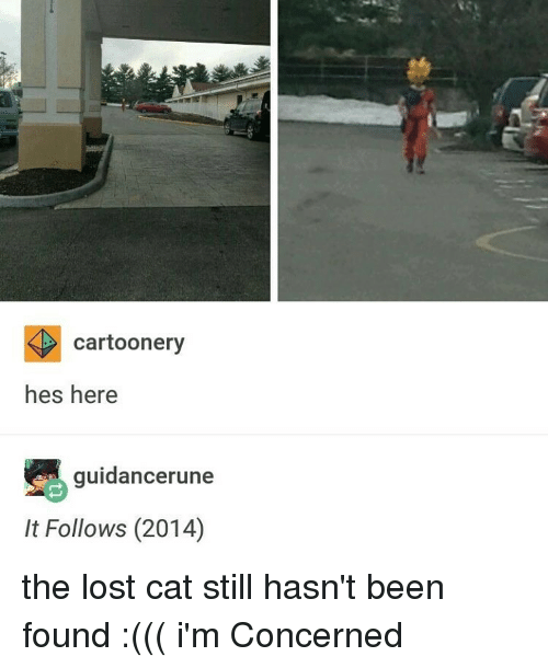 Lost Cat: cartoonery  hes here  guidance rune  It Follows (2014) the lost cat still hasn't been found :((( i'm Concerned
