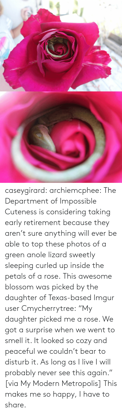 "bed: caseygirard:  archiemcphee:   The Department of Impossible Cuteness is considering taking early retirement because they aren't sure anything will ever be able to top these photos of a green anole lizard sweetly sleeping curled up inside the petals of a rose. This awesome blossom was picked by the daughter of Texas-based Imgur user Cmycherrytree: ""My daughter picked me a rose. We got a surprise when we went to smell it. It looked so cozy and peaceful we couldn't bear to disturb it. As long as I live I will probably never see this again."" [via My Modern Metropolis]   This makes me so happy, I have to share."
