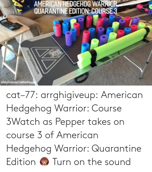 /tv/ : cat–77: arrghigiveup:   American Hedgehog Warrior: Course 3Watch as Pepper takes on course 3 of American Hedgehog Warrior: Quarantine Edition 🦔     Turn on the sound