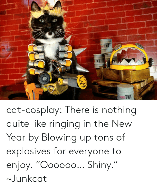 "New Year's, Tumblr, and Blog: cat-cosplay: There is nothing quite like ringing in the New Year by Blowing up tons of explosives for everyone to enjoy.  ""Oooooo… Shiny."" ~Junkcat"