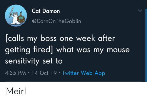 my boss: Cat Damon  @CornOnTheGoblin  [calls my boss one week after  getting fired] what was my mouse  sensitivity set to  4:35 PM 14 Oct 19 Twitter Web App Meirl