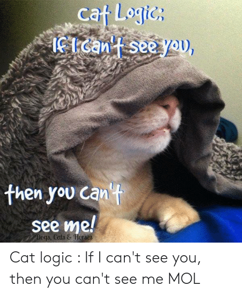 Logic, Memes, and 🤖: cat Logics  then you can't  see me!  Dega, Cati & Herae Cat logic : If I can't see you, then you can't see me   MOL