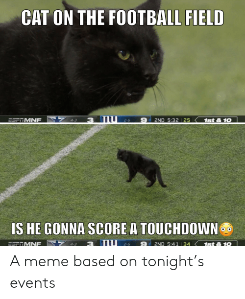 Football, Meme, and Nfl: CAT ON THE FOOTBALL FIELD  4-3  3 mU 2-6  2ND 5:32 25  ESFOMNF  1st&10  IS HE GONNA SCORE A TOUCHDOWN  2-6  4-3  3  2ND 5:41 34 1st&10  ESTTMNF A meme based on tonight's events