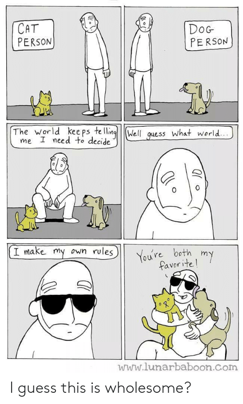Wholesome: CAT  PERSON  DoG  PERSON  The world kee ps te llingWell quess What world..  me I need to decide  I make my  own rules  You're both my  favorite!  www.lunarbaboon.com I guess this is wholesome?