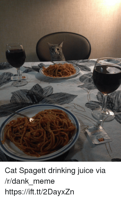 Dank, Drinking, and Juice: Cat Spagett drinking juice via /r/dank_meme https://ift.tt/2DayxZn