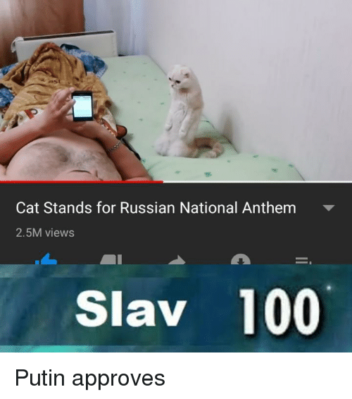 Approves: Cat Stands for Russian National Anthem  2.5M views  Slav 100 Putin approves