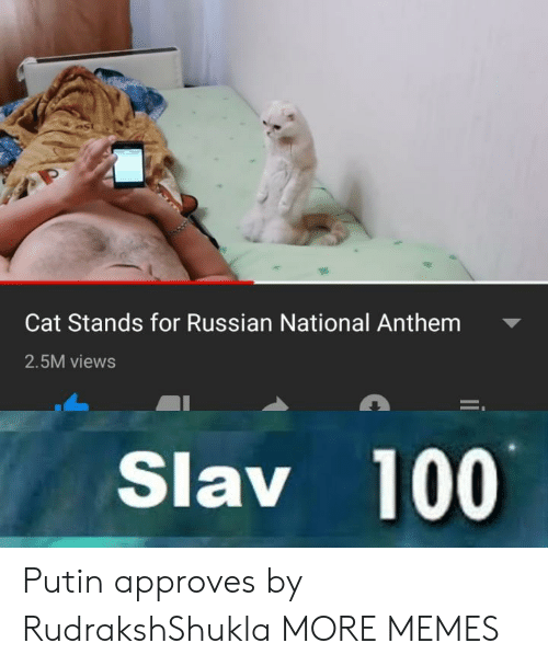 Approves: Cat Stands for Russian National Anthem  2.5M views  Slav 100 Putin approves by RudrakshShukla MORE MEMES