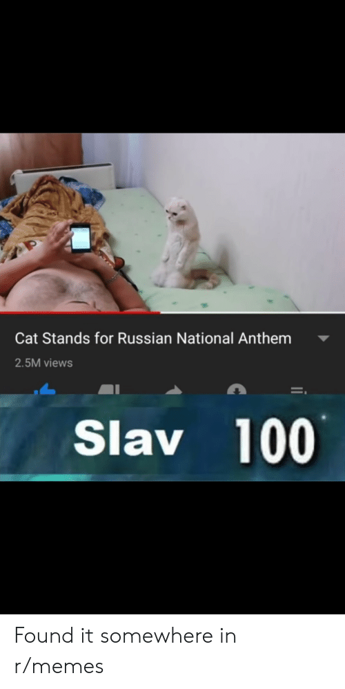 Memes, National Anthem, and Russian: Cat Stands for Russian National Anthem  2.5M views  Slav 100 Found it somewhere in r/memes