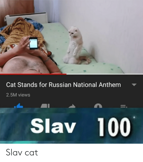 National Anthem, Russian, and Slav: Cat Stands for Russian National Anthem  2.5M views  Slav 100 Slav cat